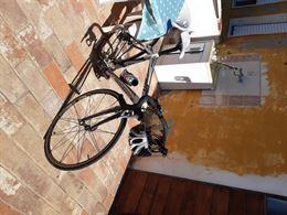Bici alluminio e forcella carbonio per inutilizzo