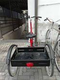 Triciclo per adulto