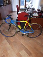 Bicicletta da corsa Olmo Orion